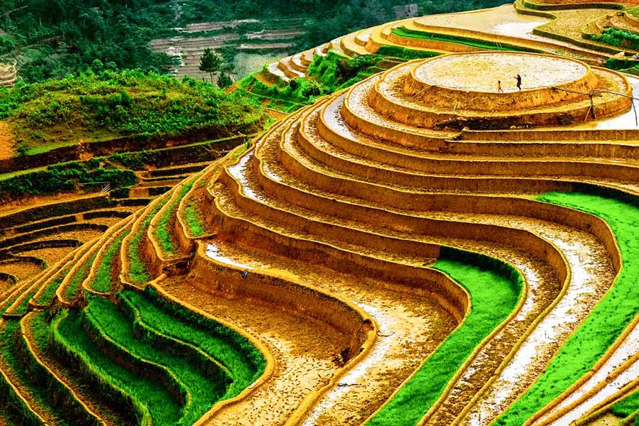 Вьетнам - добавление 7 достопримечательностей на карте мест особого государственного значения